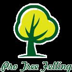 Pro Tree Felling Logo
